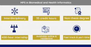 Graphic visual showing the descriptive qualities of MPS in BMHI